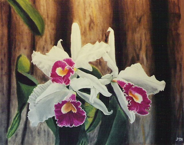 "Orchids-""16x20"" Oil Painting"