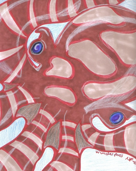 Sudsy Squid Videos