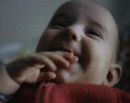 baby Pesky
